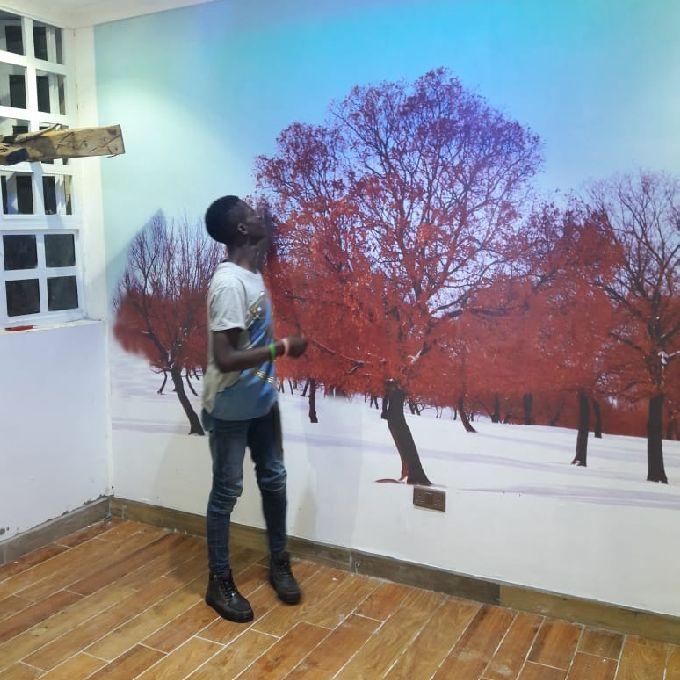 Wallpaper & Mural Installation Fundi-Expert