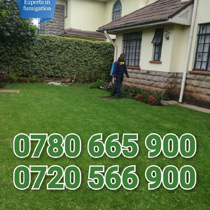 Home Fumigation Services