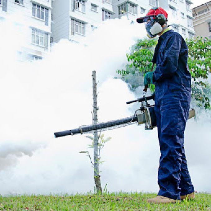 Professional Fumigation Services