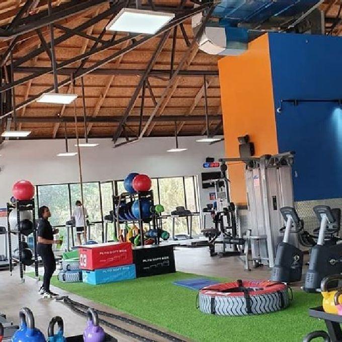 Fitness Training Expert