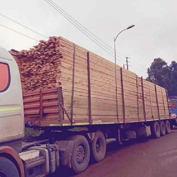 High-Quality Timber in Nairobi
