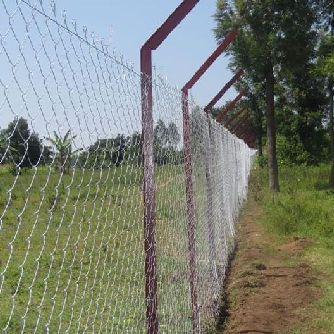 Gardening Experts In Kisumu
