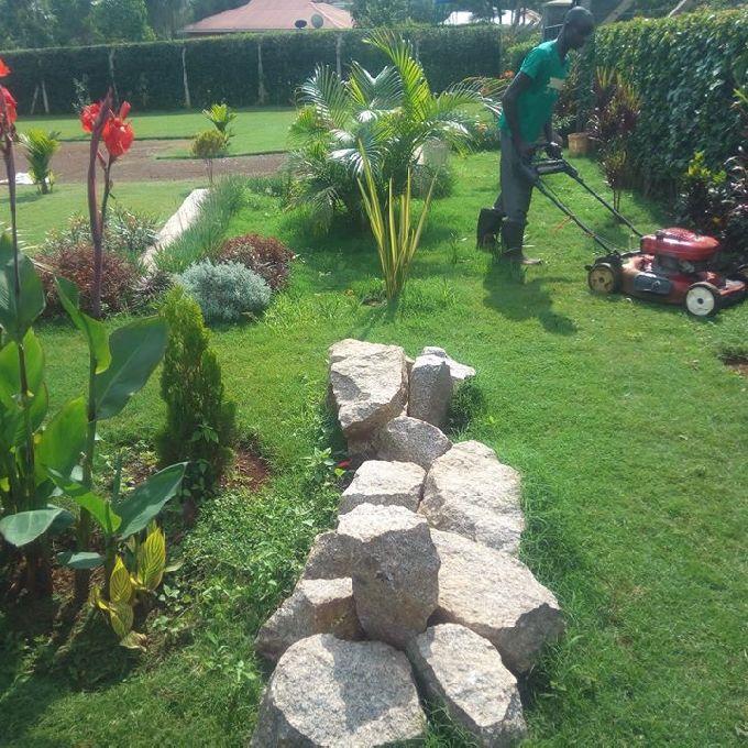 Corporate & Estate Garden Maintenance In Kisumu