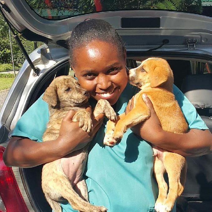 Best Dog Vaccination Services in Karen